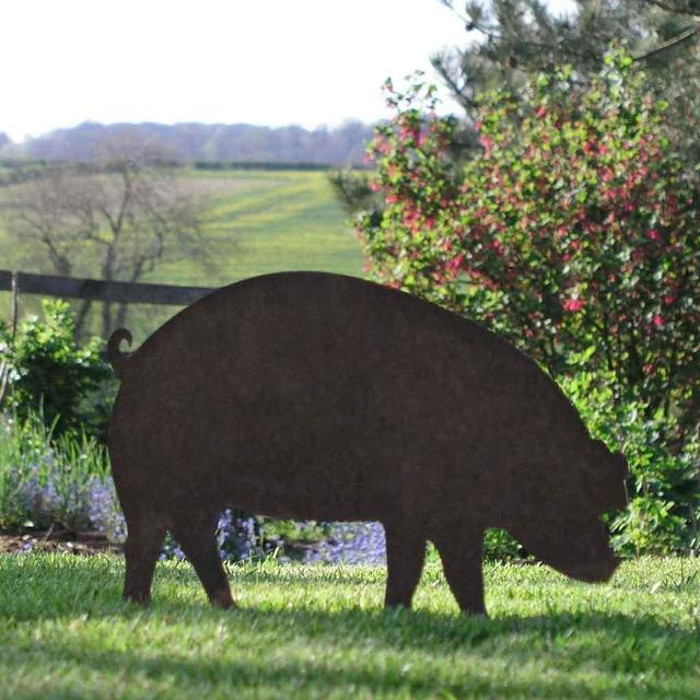 Buy Rusty Pigs The Worm That Turned Revitalising Your