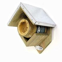 Peanut Butter Feeder for Birds