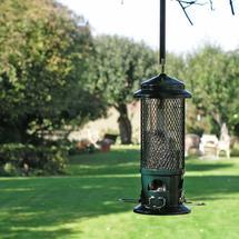 The Squirrel Buster Bird Feeder