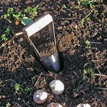 Hand held bulb planter