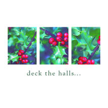 Xmas Card 5pk-Deck the Halls
