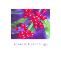 Xmas Card 5pk-Berried Treasure
