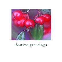 Xmas Card 5pk-Xmas Morning