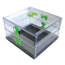 Vitopod-Propagator Small Square 2 Layer