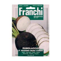 Radish Ramollaccio Seeds