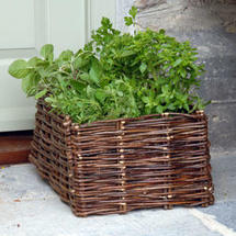 Wicker Herb Planter