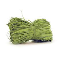 Raffia - Spring Green