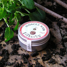 Filberts Bees Muscle Rub