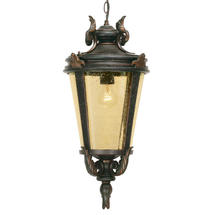 Baltimore Outdoor Hanging Lantern - Medium