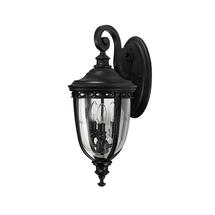 English Bridle Medium Wall Lantern - Black