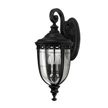 English Bridle Large Wall Lantern - Black