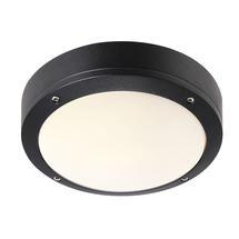 Desi 22 Ceiling/Wall Light - Black