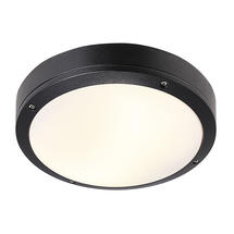 Desi 28 Ceiling/Wall Light - Black