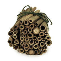 Solitary Bee Nesting Tubes - Pack of 50