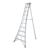Niwaki 10ft Tripod Ladder