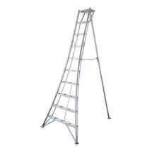 Niwaki 10ft Tripod Ladder